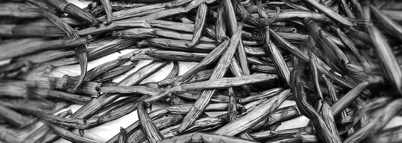 All kinds of Vanilla Supplies